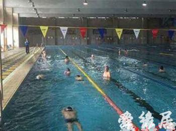 游泳俱乐部起名大全