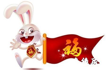 属兔的人性格特征
