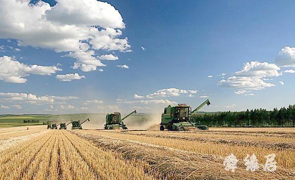 2020年农牧业公司起名字大全