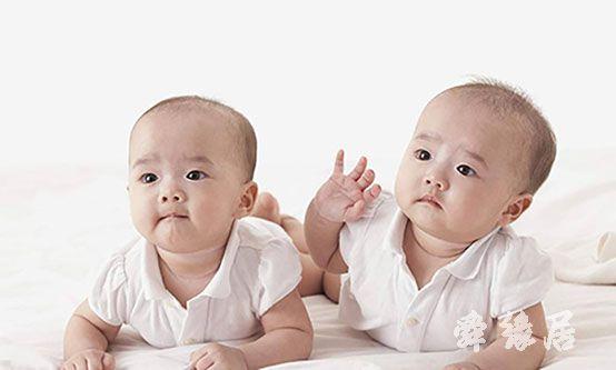 宝宝起名流程